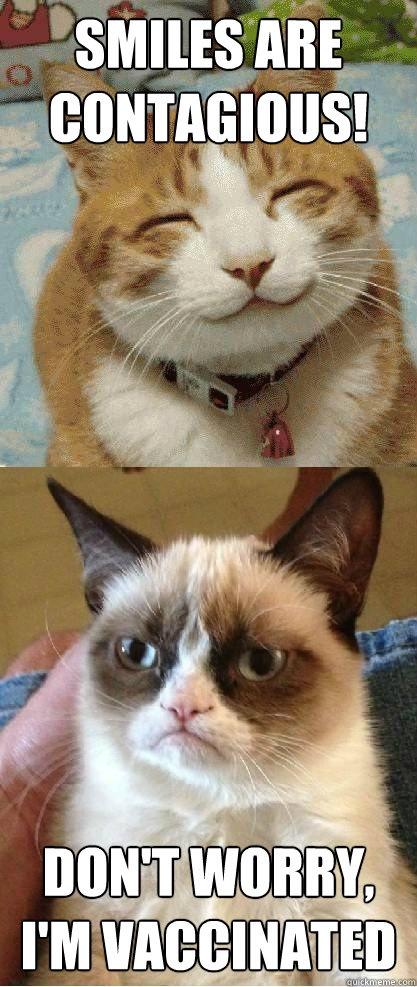 [Image: grumpy-cat-joke-pic.jpeg]